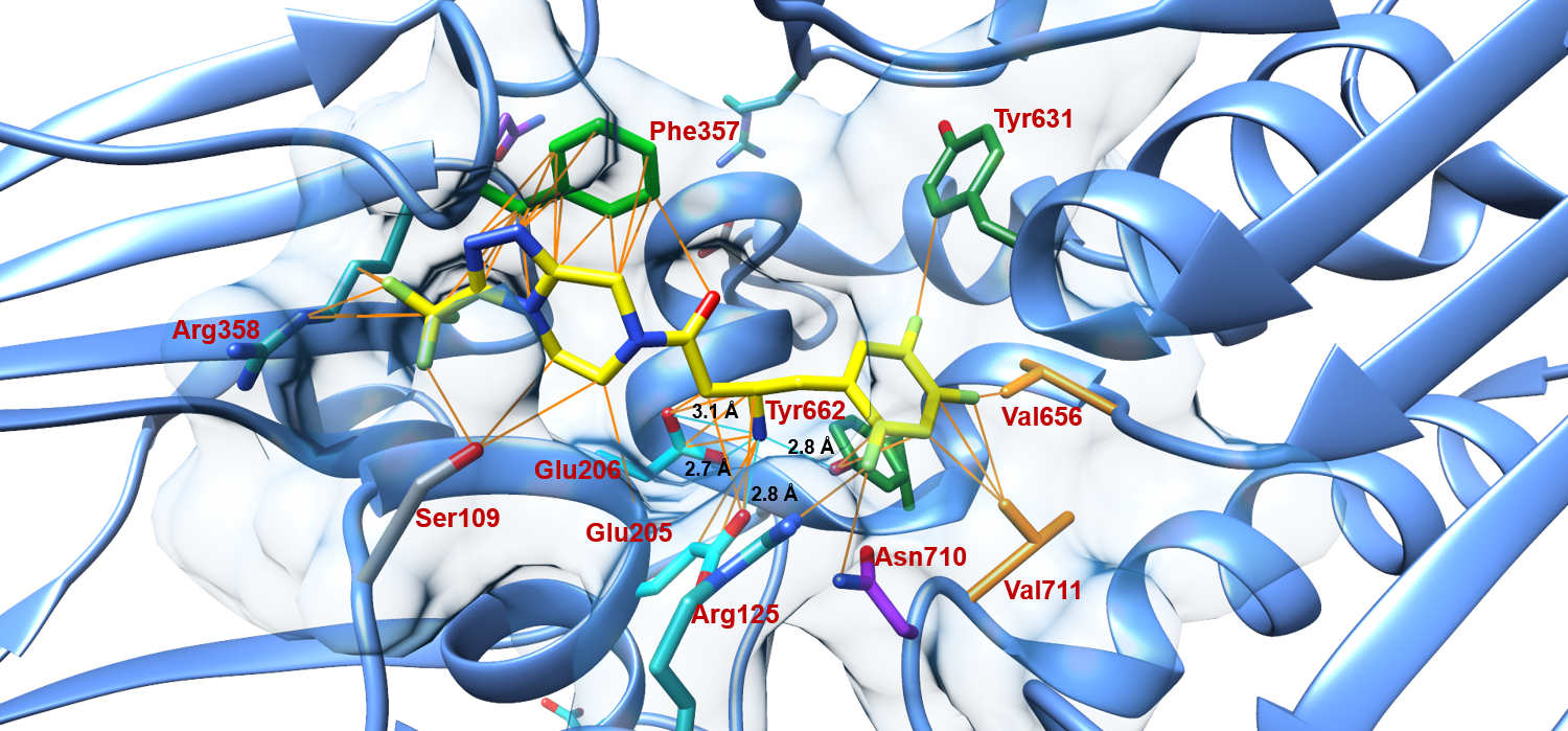 Saxagliptin: A Competitive Inhibitor of the DPP-4 Serine Protease | MAP